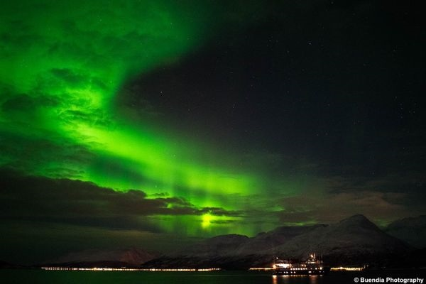 Tromsø's New Northern Lights & Whales Expedition Cruise
